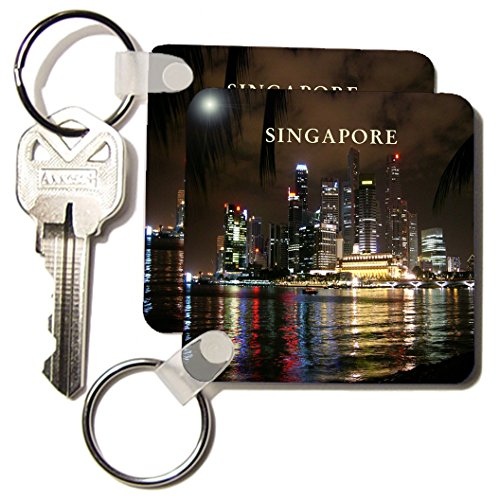 3dRose Beautiful Photo Of Singapore At Night - Key Chains, 2.25 x 4.5 inches, set of 2 (kc_80574_1)