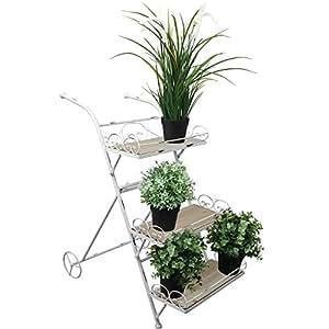 Étagère escalier à 3 étages en bois 66 x 38 x 63 cm-étagère étagère pour plantes Blumenetagere Pflanztreppe exklusiv mm