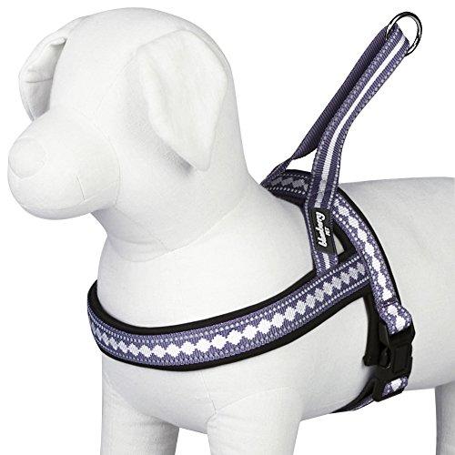 Blueberry Pet 5/8-Inch Classic Solid No Pull Jacquard Print Neoprene Dog Harness, Small, Purple Grey