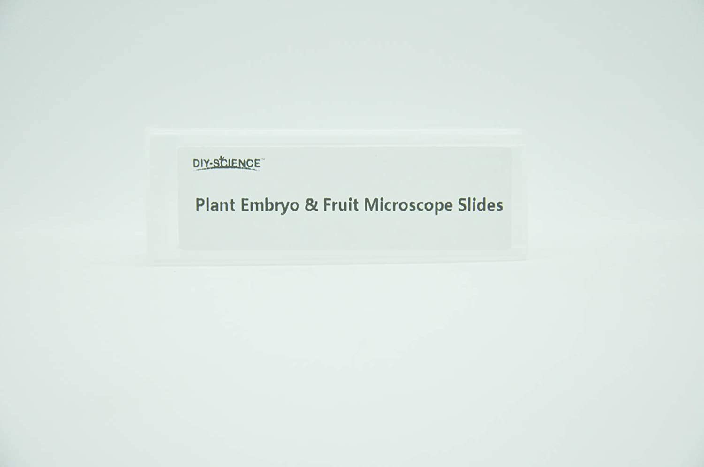 Prepared Plant Stem /& Stem Metamorphosis Microscope Slides for Kids Students Biology Science Education Pack of 5pcs Specimens by DIY-SCIENCE