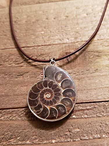 (Fossil Ammonite Pendant Leather Necklace Stone Jewelry Boho (N653))