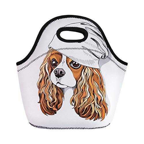 Semtomn Lunch Tote Bag Portrait of the Cavalier King Charles Spaniel in Knitted Reusable Neoprene Insulated Thermal Outdoor Picnic Lunchbox for Men Women