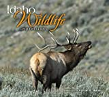 Idaho Wildlife Impressions, photography by William H. Mullins, 1560374136