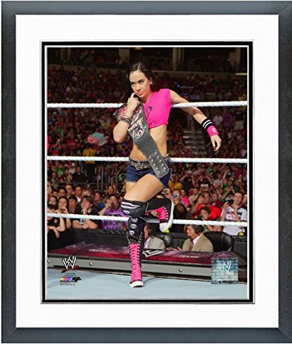 "A.J. WWE Divas Championship Belt Photo (Size: 18"" x 22"") Framed"