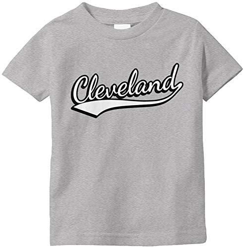 Amdesco Cleveland, Ohio Infant T-Shirt, Heather Grey 24 Month