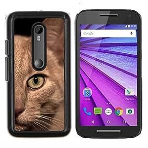 Gato birmano American Shorthair británico- Metal de aluminio y de plástico duro Caja del teléfono - Negro - Motorola Moto G (3rd gen) / G3