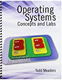 Operating Systems: Concepts and Labs