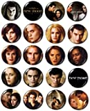 "New Moon Buttons/Pins/Badges Collection - aprox. 1"" diameter"