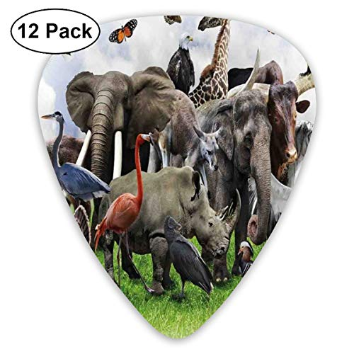 Guitar Picks 12-Pack,Digital Collage Of Wild Animals With African Safari Animals Zoo Theme Print Artwork