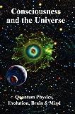 Consciousness and the Universe: Quantum Physics, Evolution, Brain & Mind