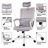 Ergonomic Office Chair Adjustable Headrest Mesh