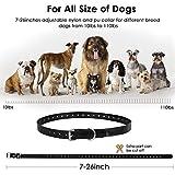 Slopehill Dog Training Collar, Dog Shock Collar