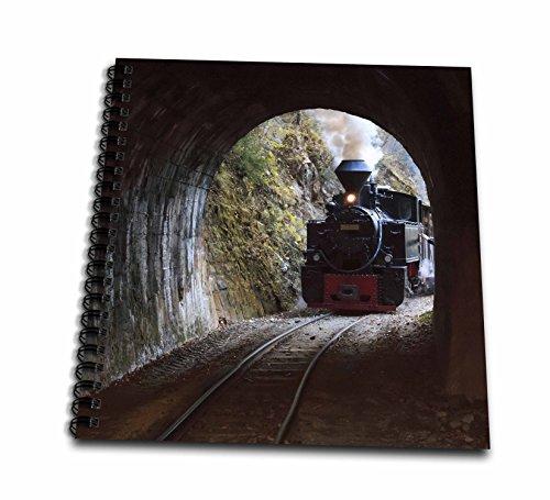 3drose Danita Delimont–Trains–ルーマニア、vaser Valley鉄道、蒸気列車を入力するトンネル。–Drawing Book 12x12 memory book db_277882_2