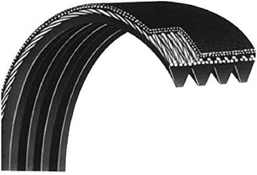 StairMaster Motor Drive Belt 43 P0221518 Works 4600CL 4600PT 4400CL Upright Stepper