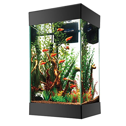 Aqueon Column Aquarium Starter Kit