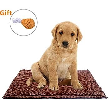 Amazon Com Dog Mat Dirty Absorbent Rugs Dog Doormat 22