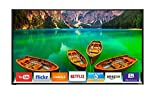 120Hz Led Tv - Vizio D43F-E2 43-inch Full Array LED 1080p 120Hz Smart HDTV (No Stand) (Certified Refurbished)