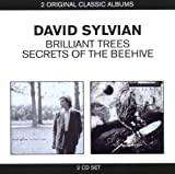 Brilliant Trees / Secrets Of The Beehive By David Sylvian (2011-06-27)