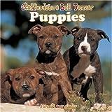 Staffordshire Bull Terrier Puppies 2007 Wall Calendar