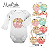 Modish - Creative Collective 12 Monthly Baby Stickers, Tribal, Flowers, Feathers, Arrows, Girl, Baby Belly Stickers, Girl, Monthly Onesie Stickers, Pink, Mint