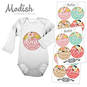 Modish - Creative Collective 12 Monthly Baby Stickers, Tribal, Flowers, Feathers, Arrows, Girl, Baby Belly Stickers, Girl, Monthly Onesie Stickers, Pink, Mint 81