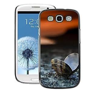 Snap-on Series Teléfono Carcasa Funda Case Caso para Samsung Galaxy S3 , ( Clam Seashell Beach )