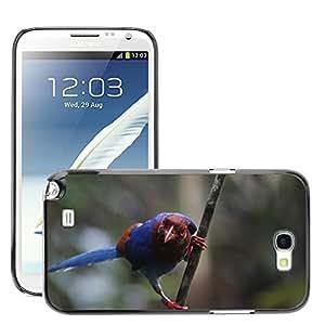 Etui Housse Coque de Protection Cover Rigide pour // M00110688 Urraca Urraca azul del pájaro de la // Samsung Galaxy Note 2 II N7100