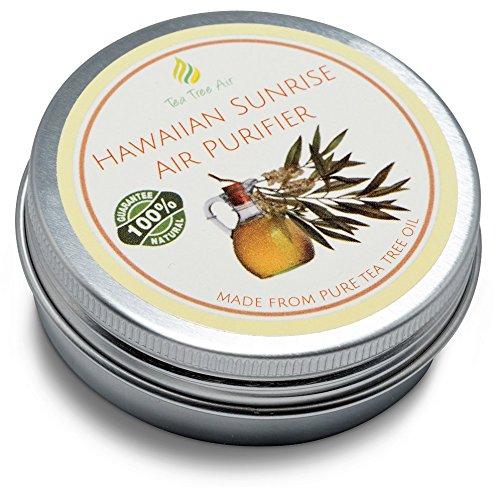 Tea Tree Air Purifier Hawaiian Sunrise ✔ Coconut Air Purifier Cream, Kills Mold, Attacks Mildew, Car Air Freshener, Air Conditioner - Ideal for kitchen, bathroom, car. ON SALE ✔ (8.8 oz - (Sunrise Tree)