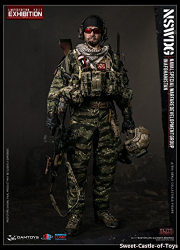 1/6 DamToys Action Figure US NSWDG in Afghanistan