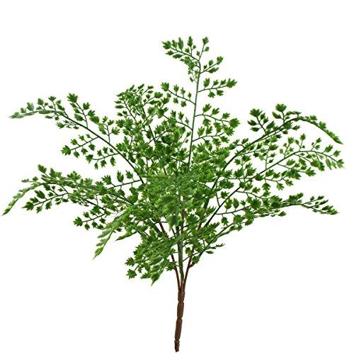 Lily Garden 18