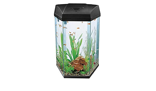 Fish R Fun 777 negro 68L hexagonal acuario: Amazon.es: Productos para mascotas