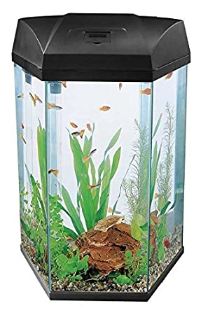 Fish R Fun 777 Negro 68L hexagonal acuario: Amazon.es: Productos para mascotas