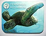 Tennessee Aquarium with Turtle Photo Fridge Magnet offers