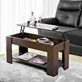 Leisure Zone Modern Lift Up Top Coffee Table with Storage Home Living Room Coffee Table w/Hidden Compartment Lift Tabletop Furniture with Lower Shelf Wood(Brown)