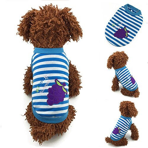 Cotton Blue Striped Dog or Puppy Sweater with Purple Grapes Applique