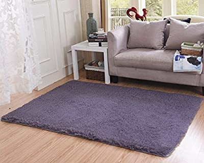 Living Room Rug, CWKTITI Super Soft Indoor Modern Shag Area Rugs Bedroom Rug for Children Play Solid Home Decorator Floor Rug and Carpets 4- Feet By 5- Feet, Gray Purple