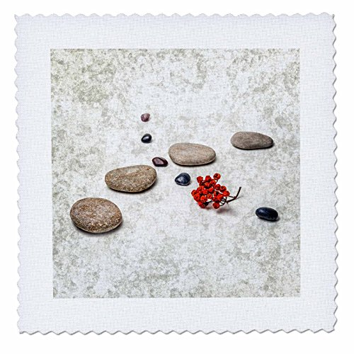 3dRose Alexis Photography - Objects Zen - Intersection of stones and pebbles, cluster of red rowan berries. Zen - 22x22 inch quilt square (qs_265666_9)