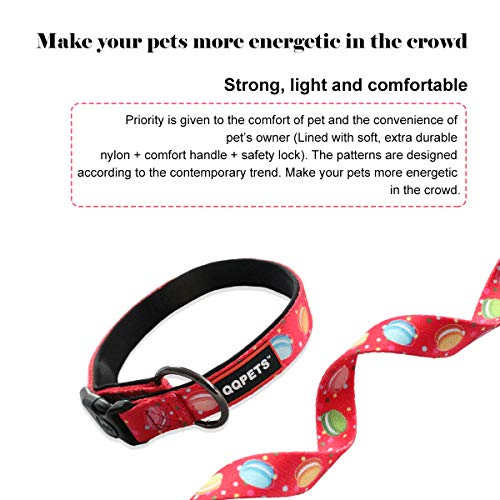 QQPETS Dog Collar Set Adjustable Collars with Handle for Medium or Large Dogs Training Walking