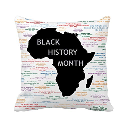 Awowee Throw Pillow Cover Raster for Black History Month Including Names Time Periods 20x20 Inches Pillowcase Home Decorative Square Pillow Case Cushion Cover