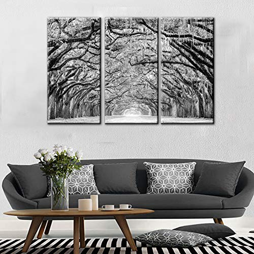 TUMOVO 3 Panels Black White Tree Canvas Wall Art - Oak Trees are Draped with Spanish Moss Landscape Canvas Pictures for Wall Framed Painting for Bedroom Living Room Office Ready to Hang(28''x42'') ()