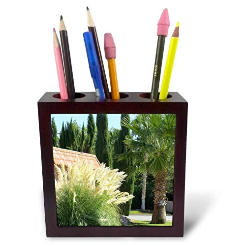 - 3dRose Jos Fauxtographee- Beaver Dam Palms - Beaver Dam with Palm Trees and Pampas Grass - 5 inch Tile Pen Holder (ph_295673_1)