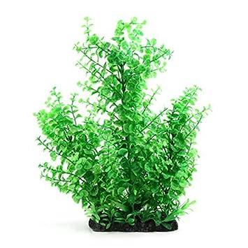 Plantas DealMux plástico verde de la hierba bajo el agua para peces de acuario tanque Paisaje Decoración: Amazon.es: Productos para mascotas