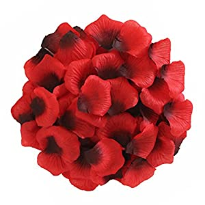 JUYO VONSAN 1000pcs Rose Petals Wedding Flowers Favors for you special wedding (Red & Black) 7