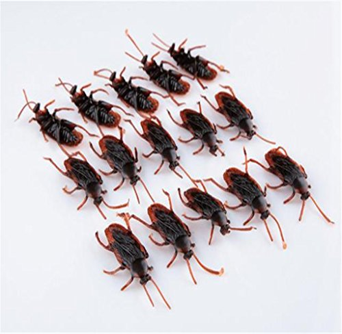 [Tosangn 15PC Halloween Props Fake Cockroaches] (Black Spider Animated Prop)