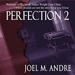 Perfection 2 Audiobook