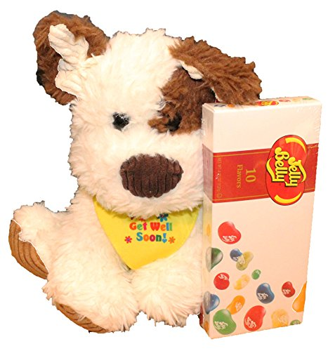 Twisted Anchor Trading Co Get Well Gifts - Cuddly Get Well Puppy Dog Plush Gift Set with Jelly Belly Gift Box