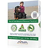 Arava Flea & Tick Control Drops: Treatment for Dogs (4-Doses) - Natural, Aromatherapy Medicated. Repels Pests with Natural Oils - Safe on Skin and Coats - Enhanced Defense & Prevention (3 Variations)