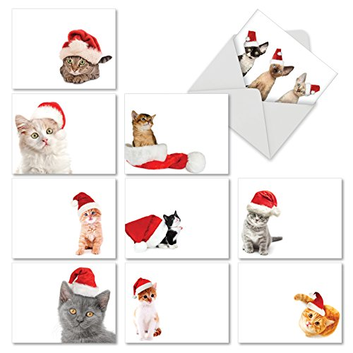 Boxed Set of 10 'Santa Cats' Blank Christmas Greeting Cards - Cute Christmas Cat Cards 4 x 5.12 inch, Assorted Sweet Christmas Kitten Holiday Notes, Festive Feline Christmas Cards M6687XSB]()