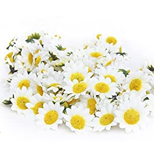 100Pcs Artificial Flower Heads Gerber Daisy Sunflower Heads Silk Fake White Flower Heads for Wedding Party Flowers Decorations Home D¨¦cor White 107