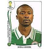 FIFA World Cup 2014 Shola Ameobi Sticker No.486